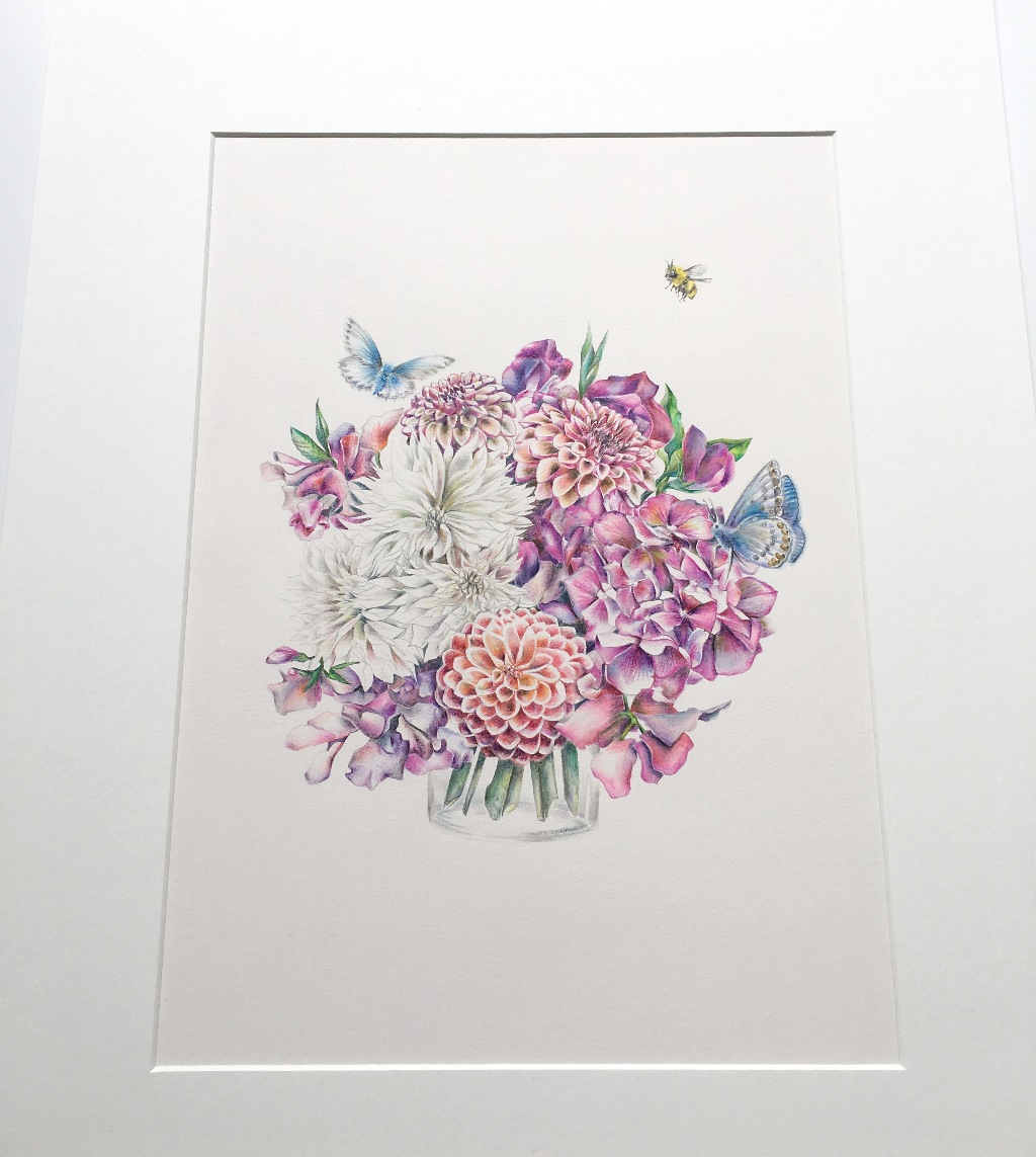 Original commission illustration by botanical artist illustrator Charlotte Argyrou