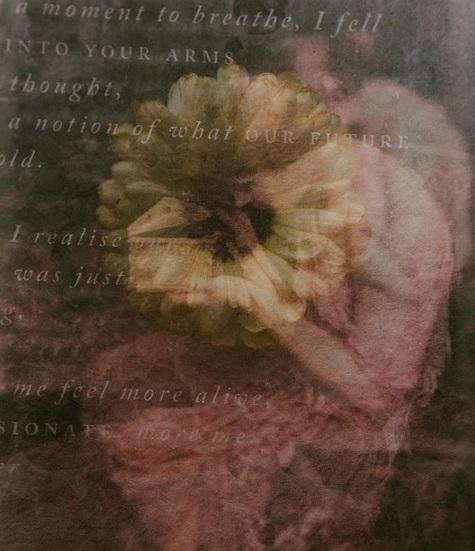 Handmade paper and calligraphy on botanical artist Charlotte Argyrou's blog