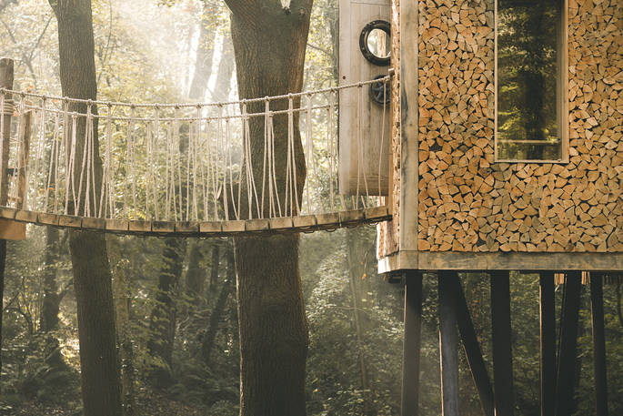 Woodsman's Treehouse on botanical illustrator Charlotte Argyrou's blog